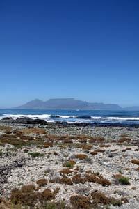 On Robben Island South Africa